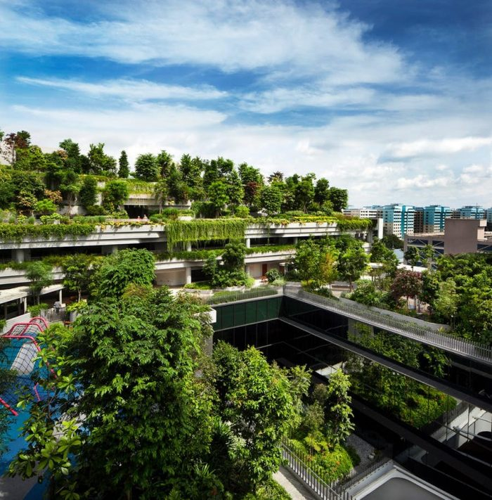 Greenry-Covered retirement village declared World Building of the Year