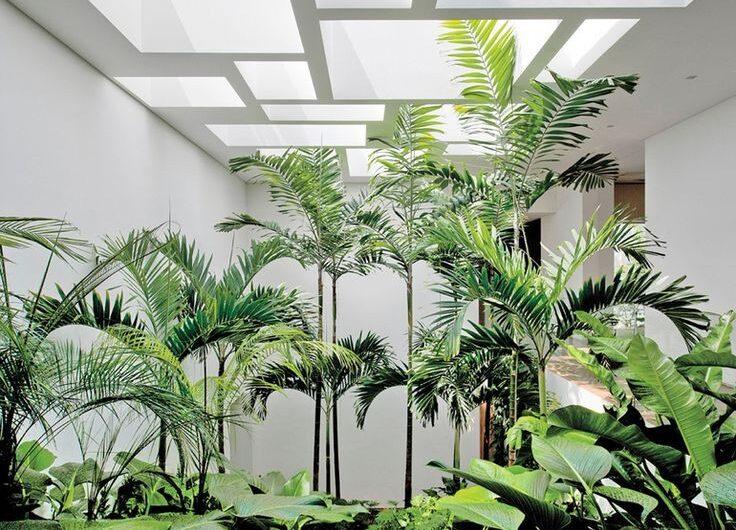 35 Top Trending Indoor Gardens Ideas